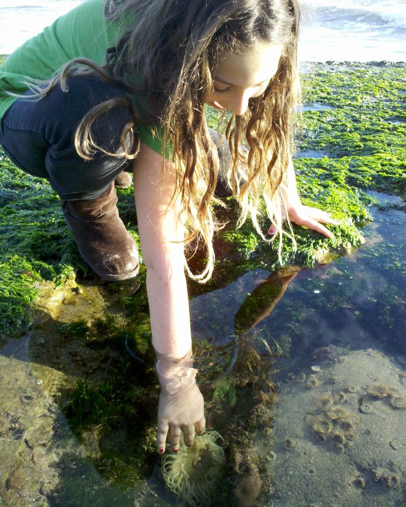 Kaila Tide Pool 2